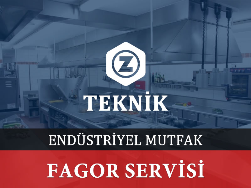 Fagor Servisi