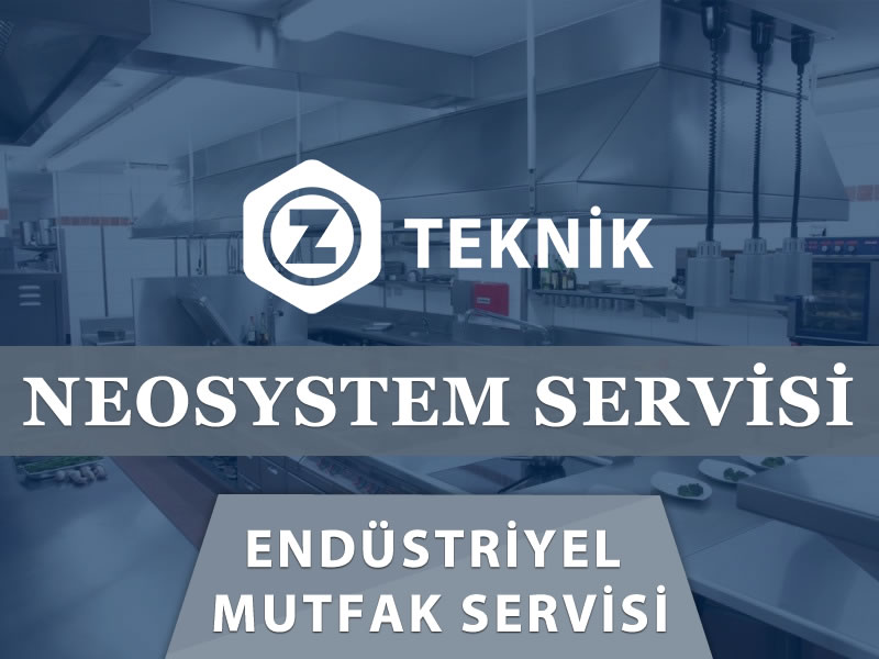 NeoSystem Servisi